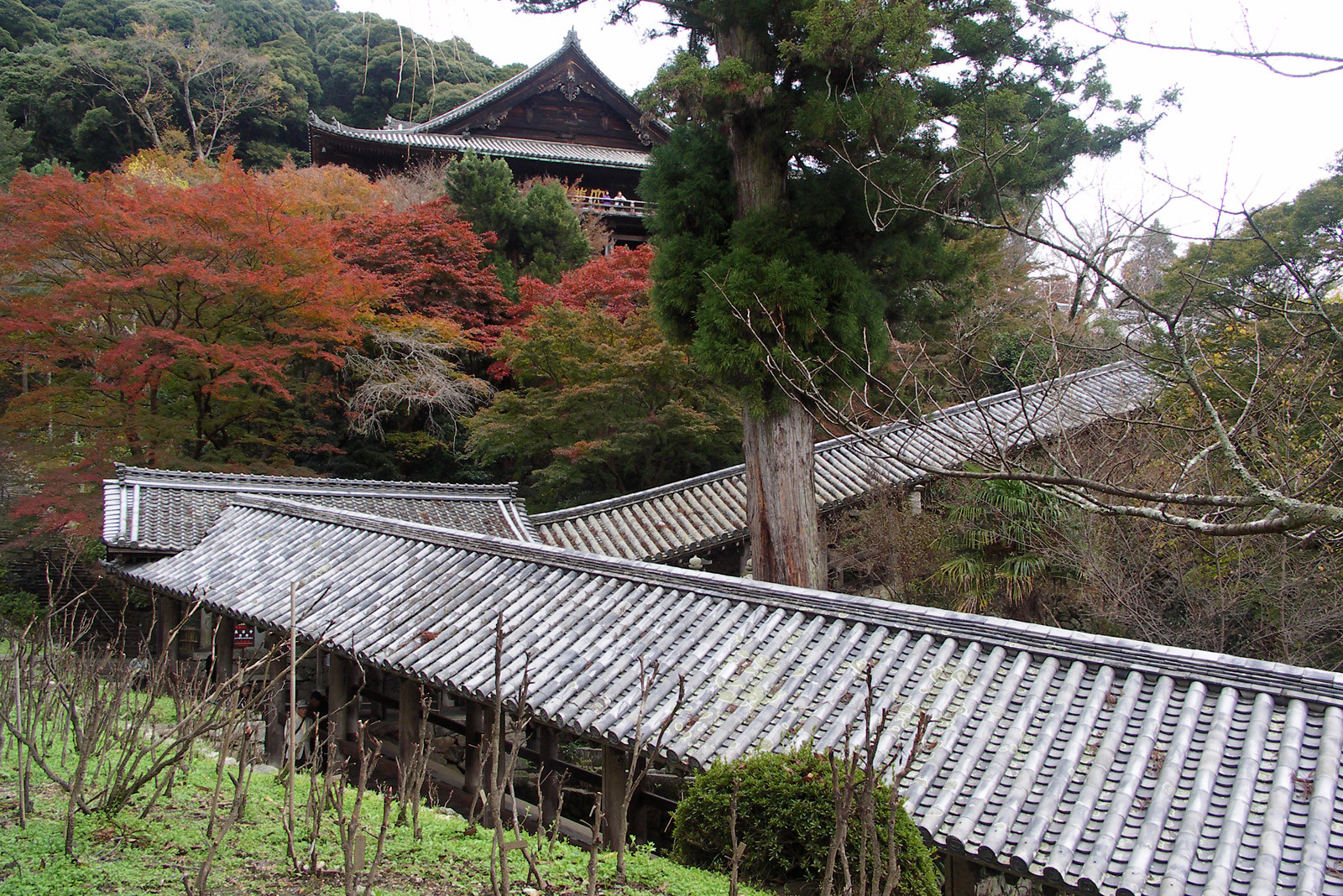 奈良の旅~長谷寺
