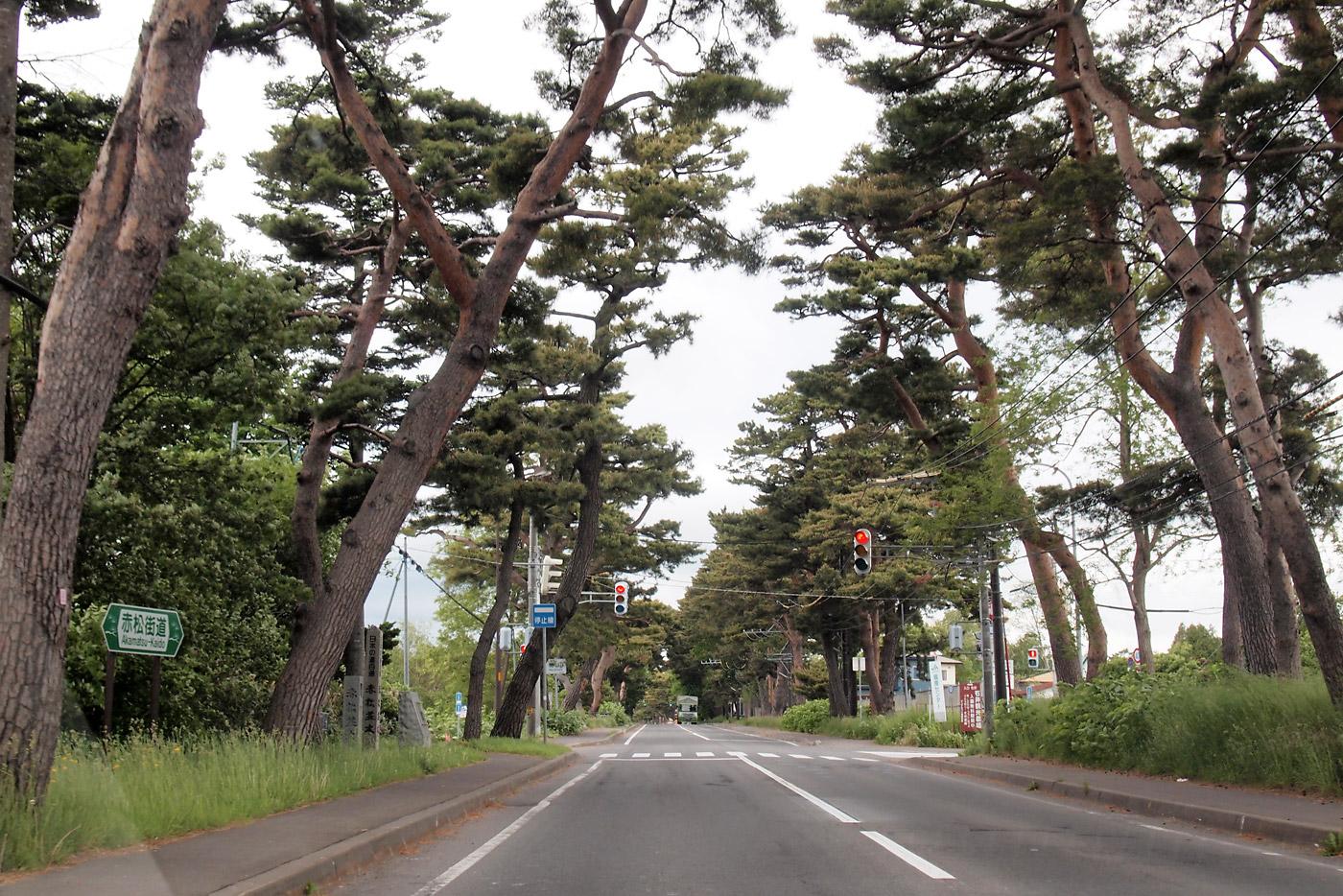 北斗星で帰る 函館真イカ&登別温泉の旅 10