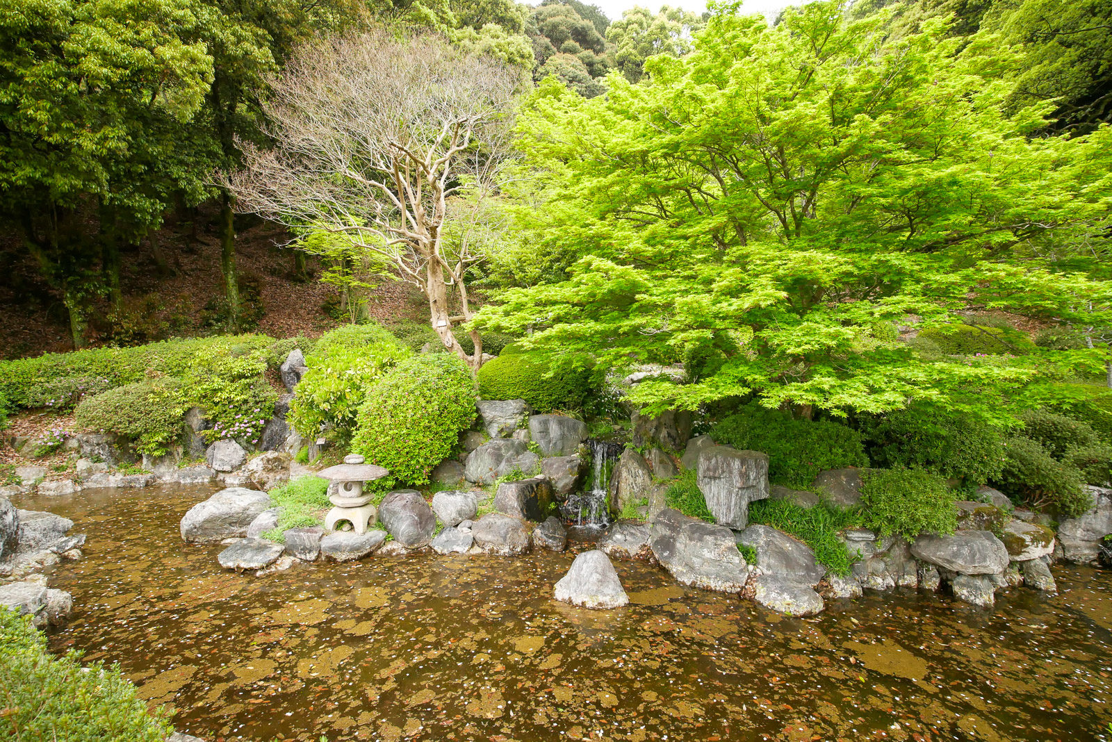 岩国城庭園