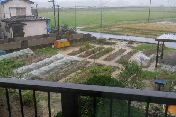 台風と大雨に翻弄